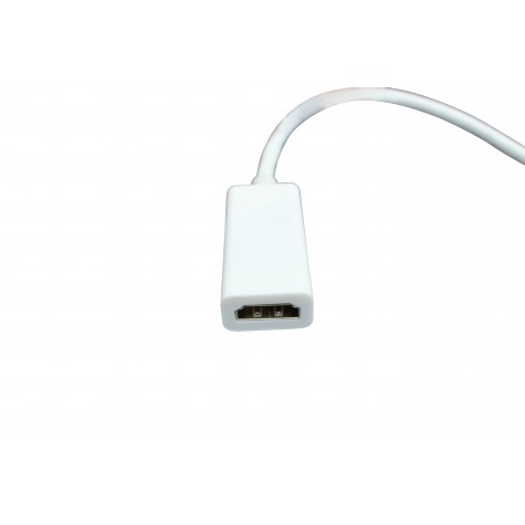 Apple Mini displaypoort - HDMI kabel female